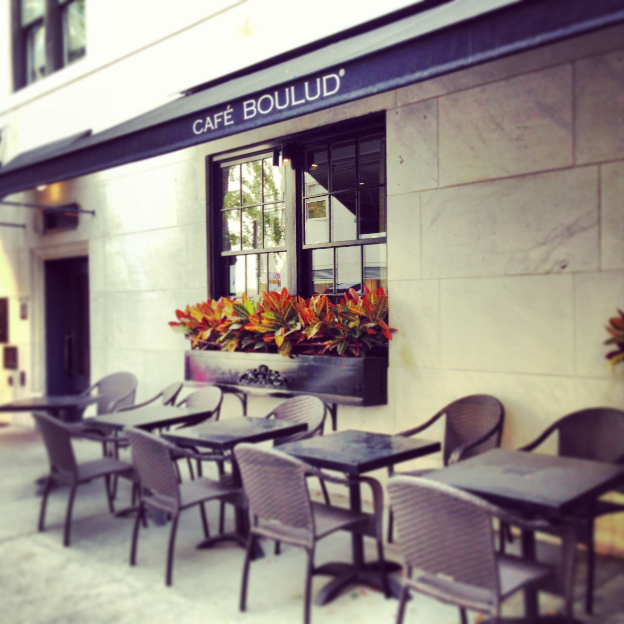 Cafe Boulud, New York - Thoroughly Modern Milly