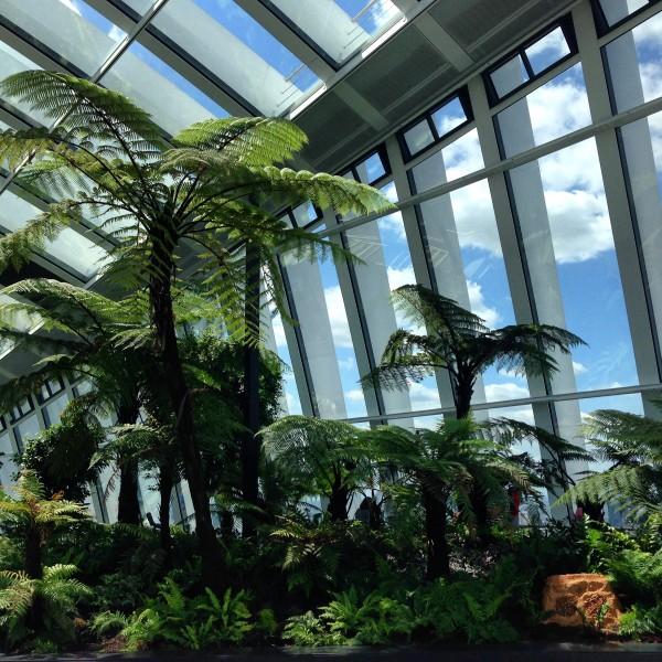 sky garden 6