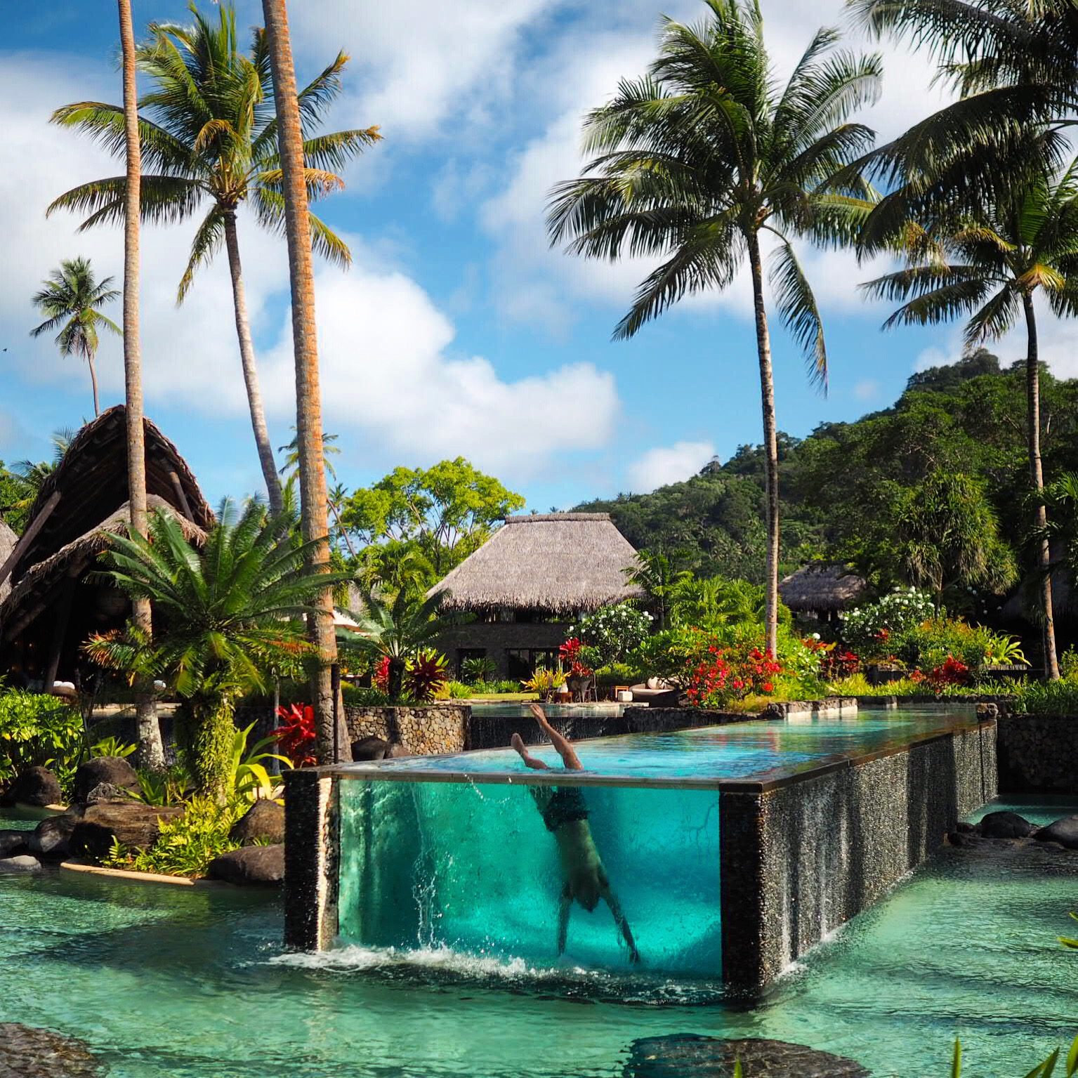 Laucala Island Fiji Thoroughly Modern Millydivdiv