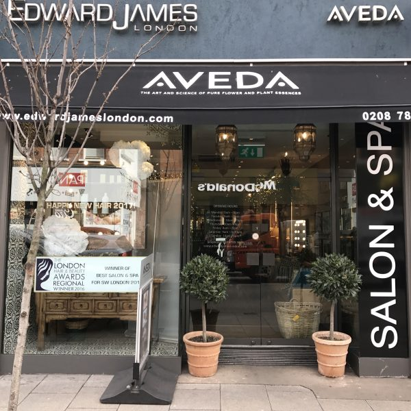 Edward James salon